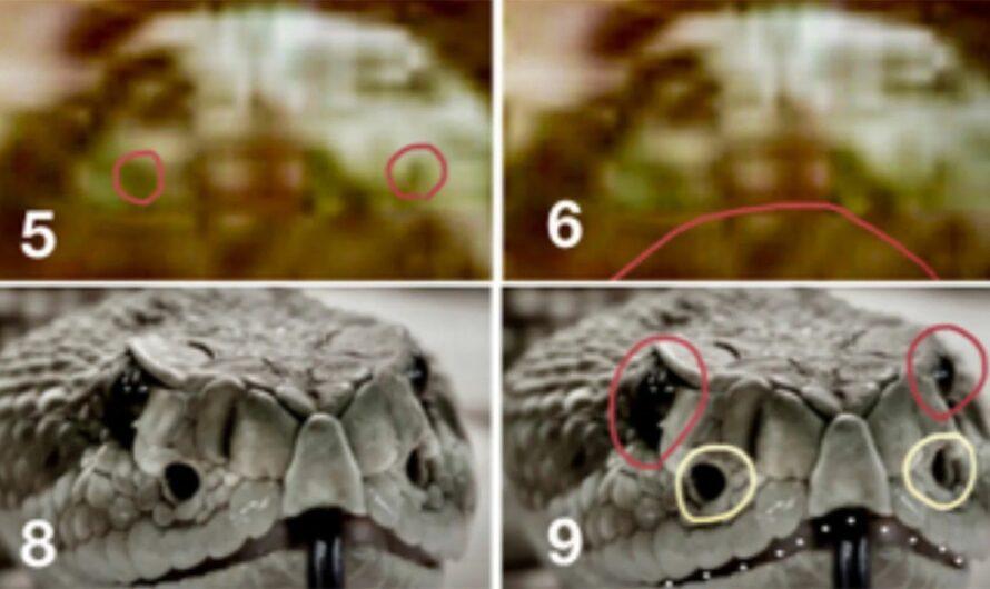 Американский энтомолог заявил, что нашел на Марсе насекомых и рептилий