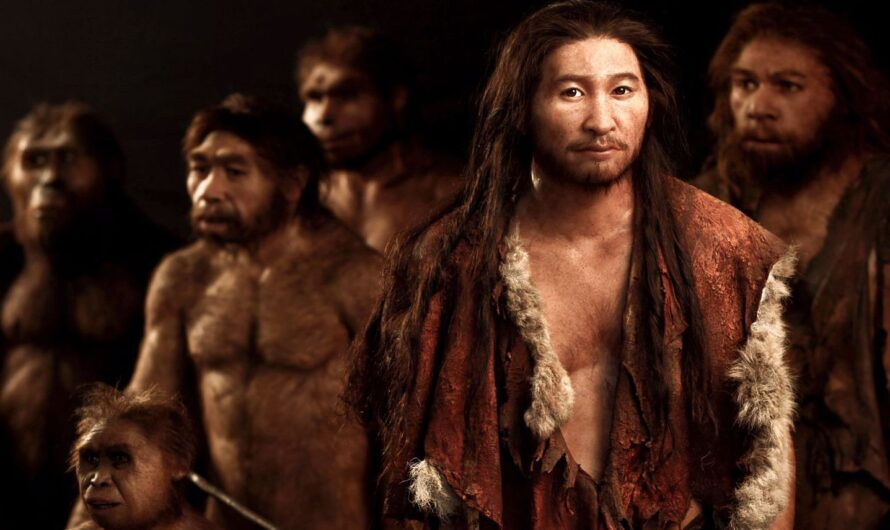 В чем разница между Homo sapiens и Homo sapiens sapiens?