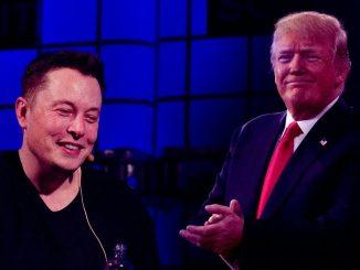 Дональд Трамп и Илон Маск