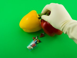 Мифы о ГМО