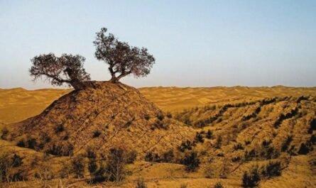 Аномальная китайская пустыня Такла-Макан (Покинутое место)