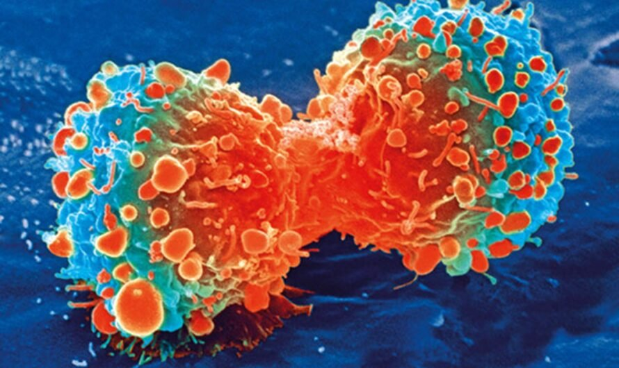 Экспериментальная вакцина от рака дала результат