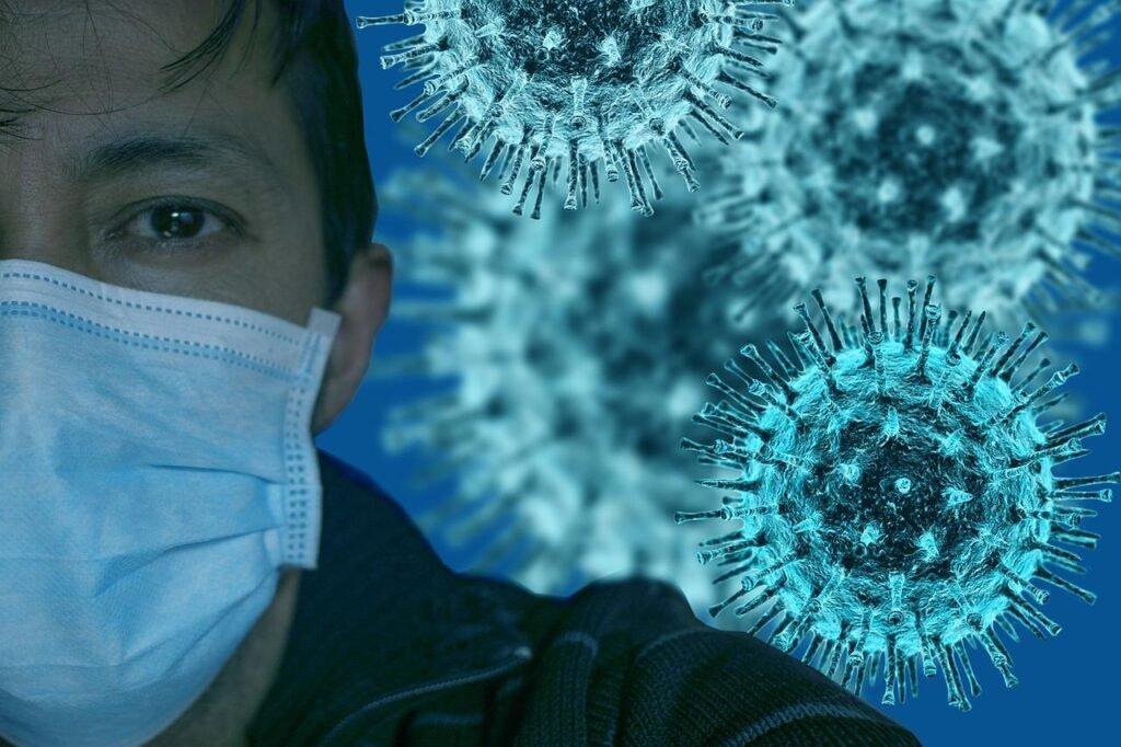 На выращенных мини-органах ученые изучили воздействие коронавируса на организм