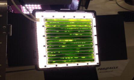 На МКС установили фотобиореактор для переработки углекислого газа в кислород