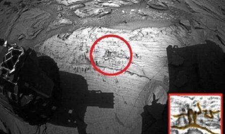 """Глупый уфолог Скотт Уоринг разглядел на Марсе """"наскальную живопись"""""""