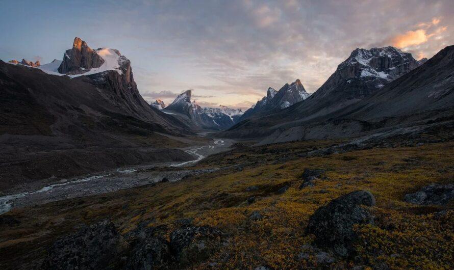 Поля, скрывавшиеся под льдами 40 000 лет, обнажились из-за глобального потепления