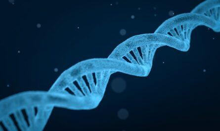 Ученым удалось открыть ген регенерации