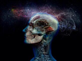 Итальянские ученые: мозг человека очень похож на Вселенную