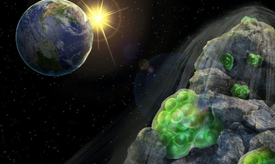 Бактерии Deinococcus radiodurans способны выживать в космосе