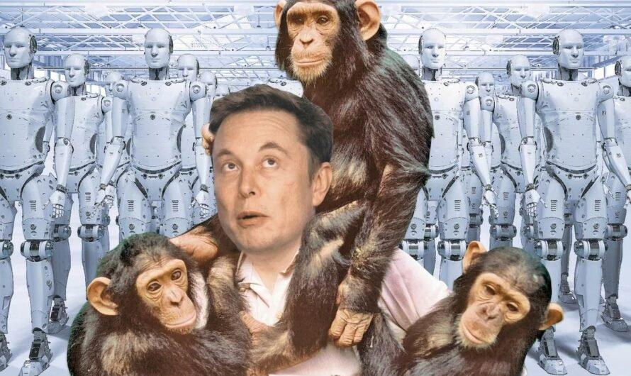 Будущее человечества: 5 прогнозов от Илона Маска