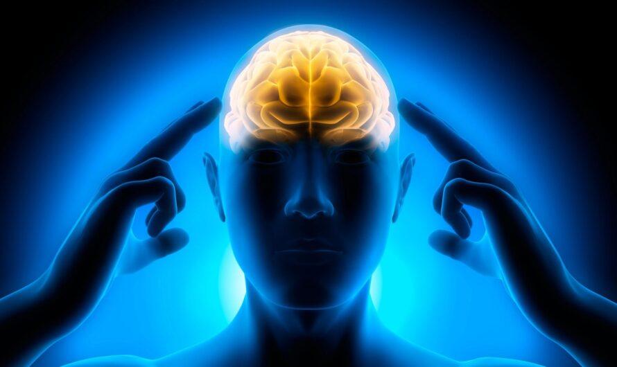 Новое исследование: сознание является энергетическим полем