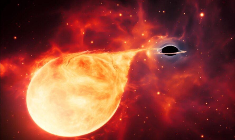 Эта черная дыра «откусывает кусок» от звезды каждые 114 дней