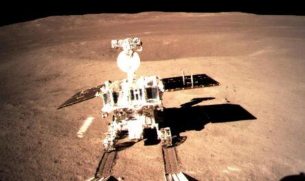 """Китайская лунная миссия """"Чанъэ-4"""" приступила к выращиванию картофеля и шелкопряда"""