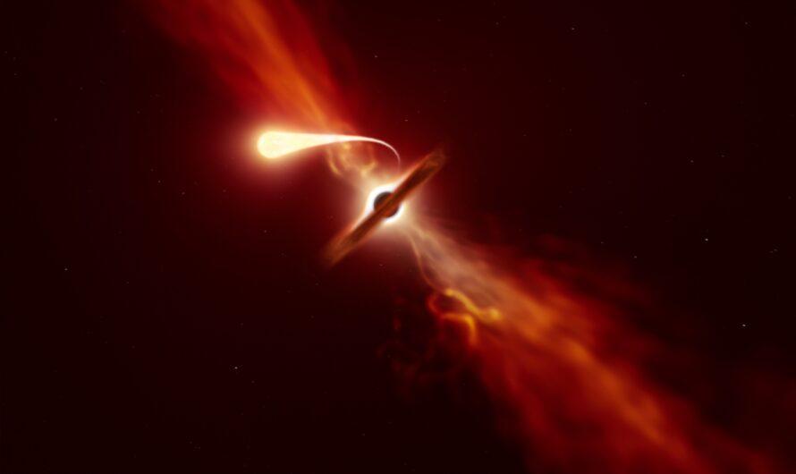 Эндопаразитические черные дыры могут пожирать звезды изнутри, как рак