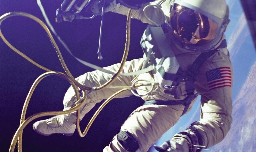 Сколько всего человек побывало в космосе?