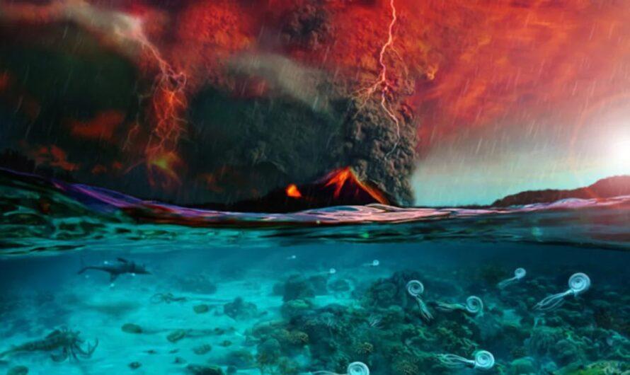 Приближается массовое вымирание, поскольку организмы стремительно покидают экватор