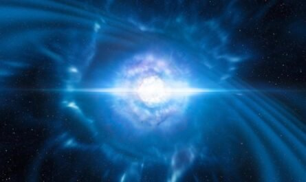 Радиопульсары и их излучение