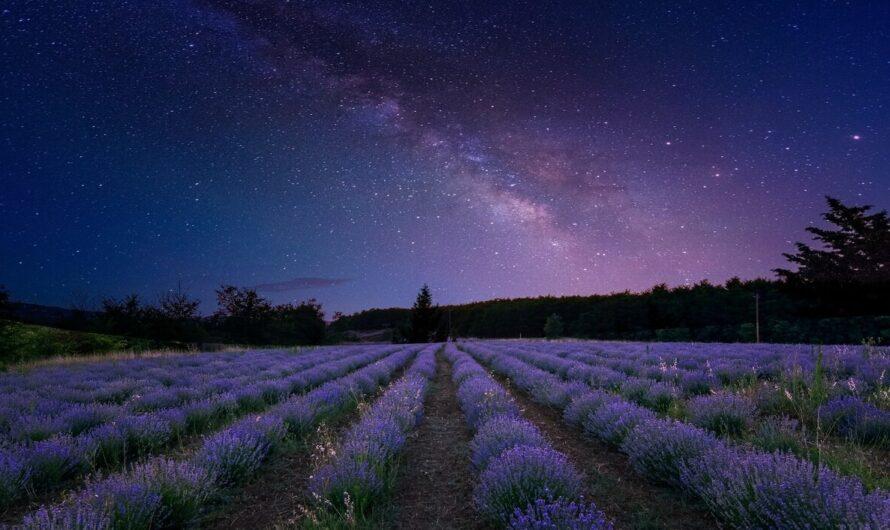 Три удивительных факта о ночном небе